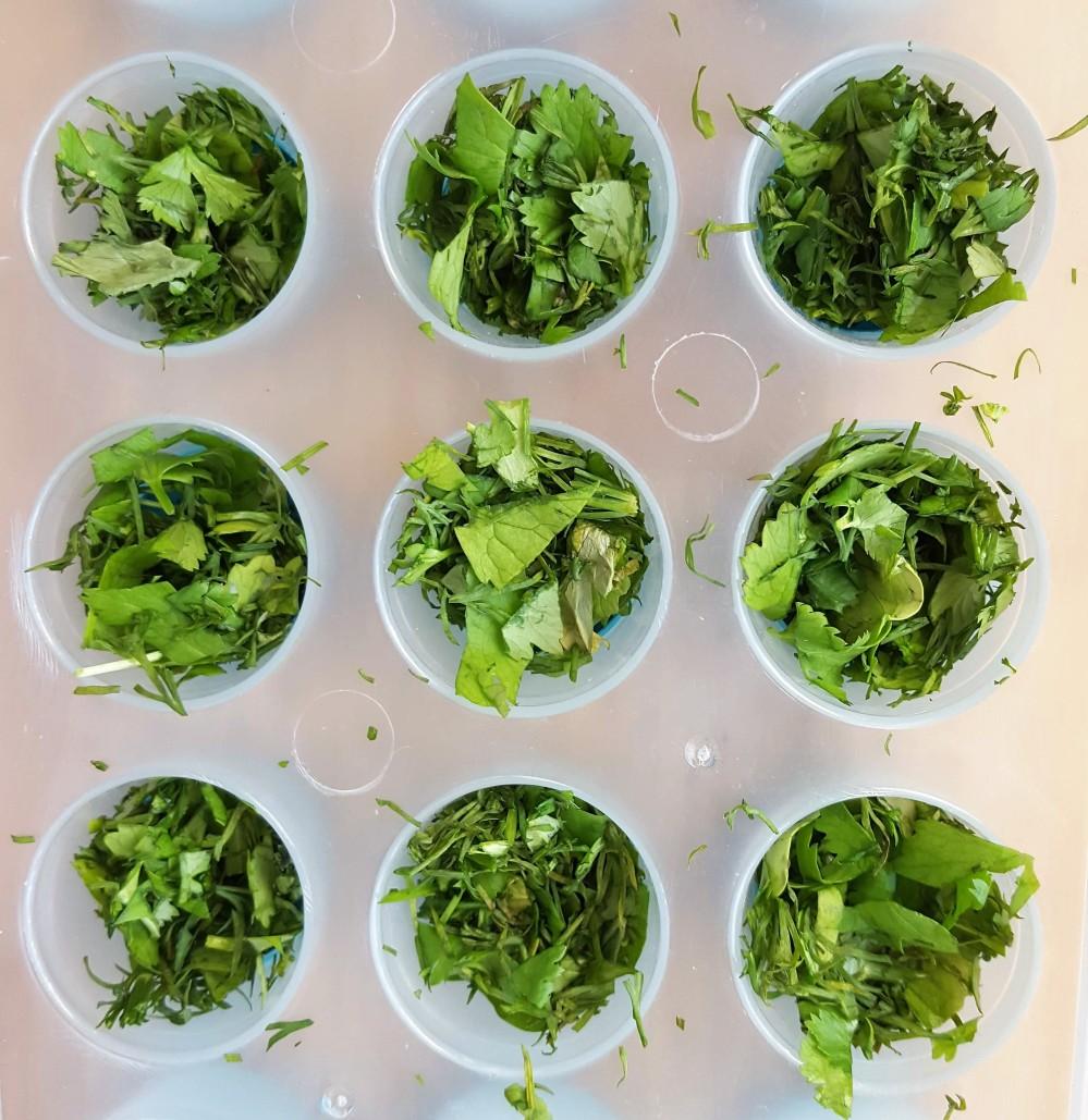 tray-herbs
