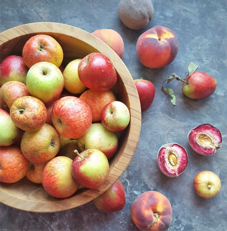 bowl of apples and peaches